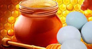Khasiat Telur Dan Madu
